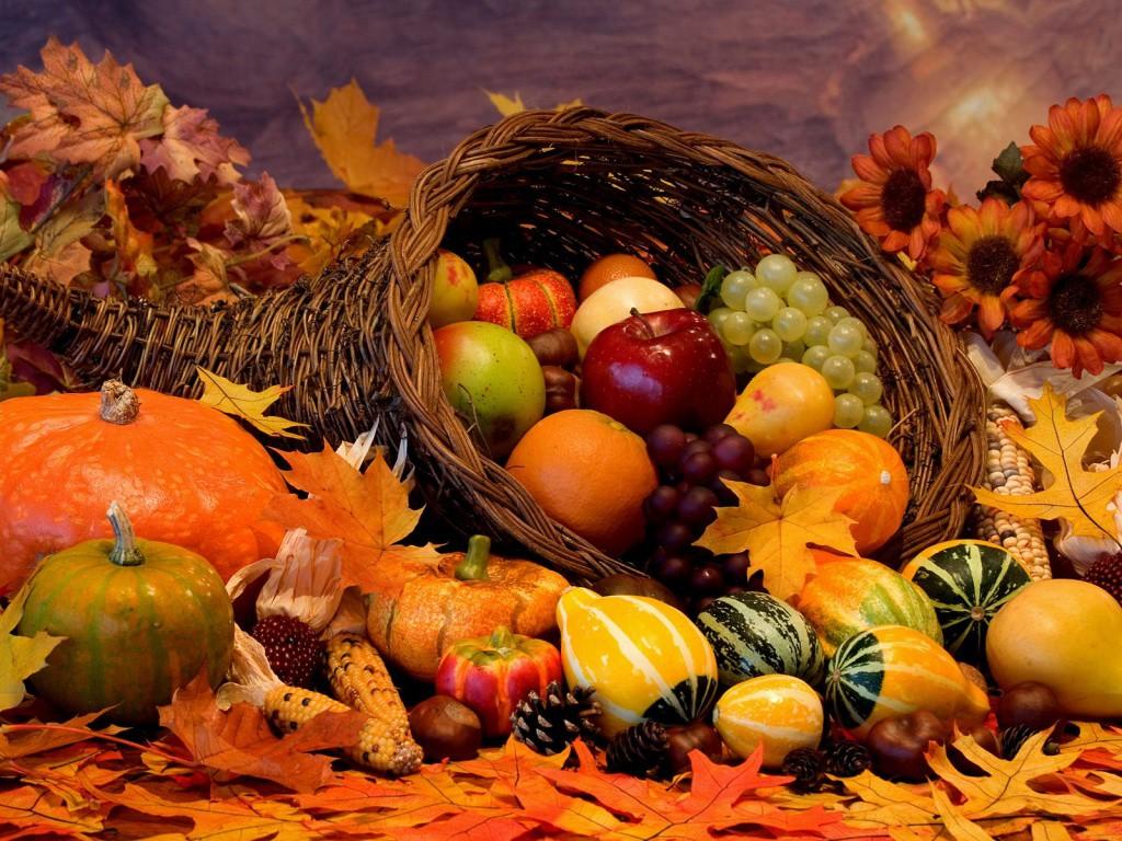 Fiori e profumi d autunno a valeggio sul mincio radio pico for Immagini fiori autunnali