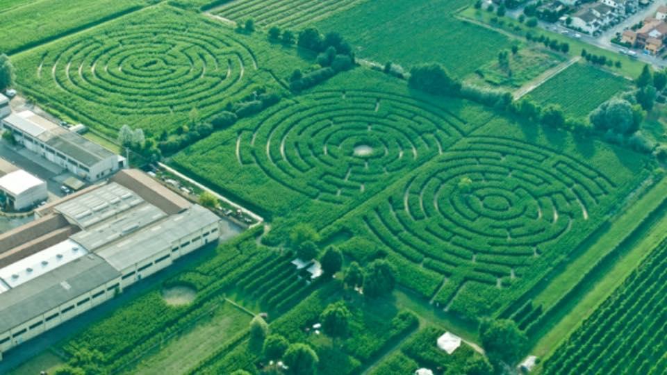 Ad alfonsine vicino a ravenna il labirinto dinamico piu for Labirinto alfonsine